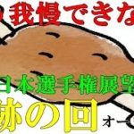 #227         2019/10/31【奇跡の回】オートレース 我慢できずに少額にして車券を購入してみたら・・・?SG全日本選手権クズ犬展望もあり