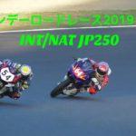 鈴鹿サンデーロードレース2019 最終戦 INT/NAT JP250