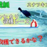 ボートレースライブ配信 三国競艇 越前コシヒカリ収穫レース